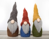 Gnomes Needle Felting Kit - beginner friendly - includes video instructions - DIY Craft Gift