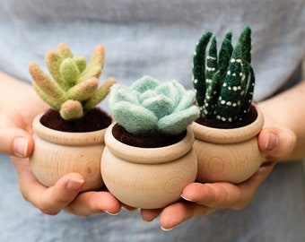Succulents Needle Felting Kit - beginner friendly - includes video instructions - DIY Craft Gift - potted plants - cacti - cactus