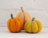 Pumpkins Needle Felting Kit - beginner friendly - includes video instructions - DIY Craft Gift - Halloween Fall Autumn Decoration