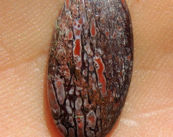 Items similar to Dinosaur Bone Cabochon Pink Red great cell