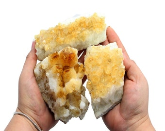 Citrine Cluster - Raw Citrine Cluster Power Stone - A Grade from Brazil LARGE Citrine Crystal (OB10B3)