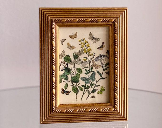 Vintage Floral Butterflies Framed Print found by Willabird Designs Vintage Finds