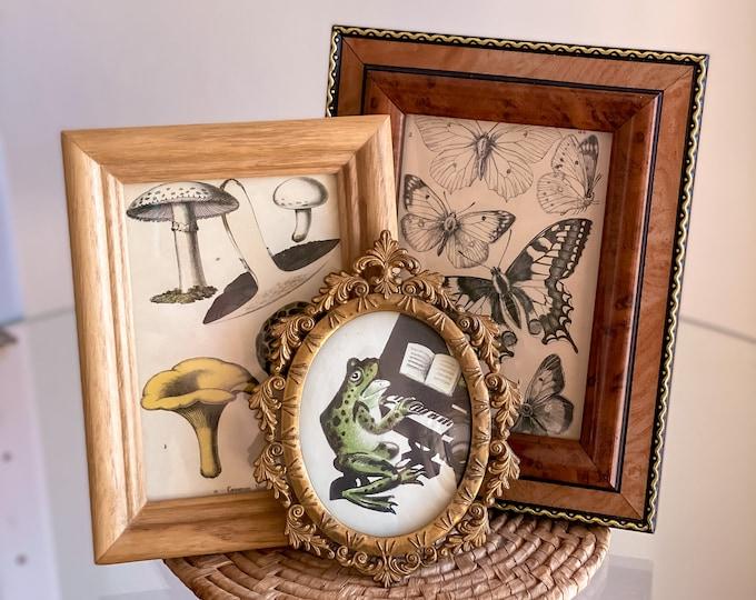 Vintage Woodland Creatures Wall Décor found by Willabird Designs Vintage Finds. Mushroom print, butterflies, frog print