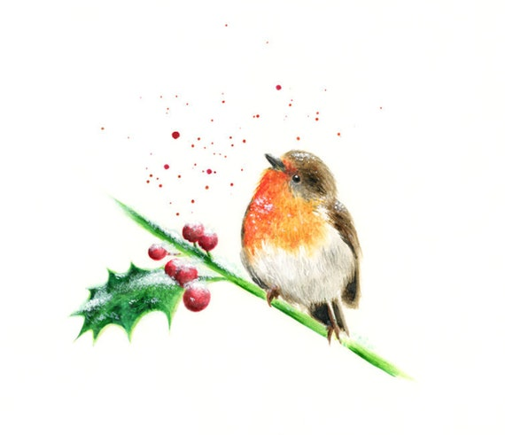 Bird Wall Art Robin Print A3 Robin illustration British Bird illustration Bird Print
