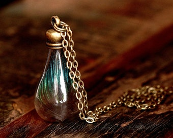 Real peacock feather in the glass vase - bronze necklace |  K103