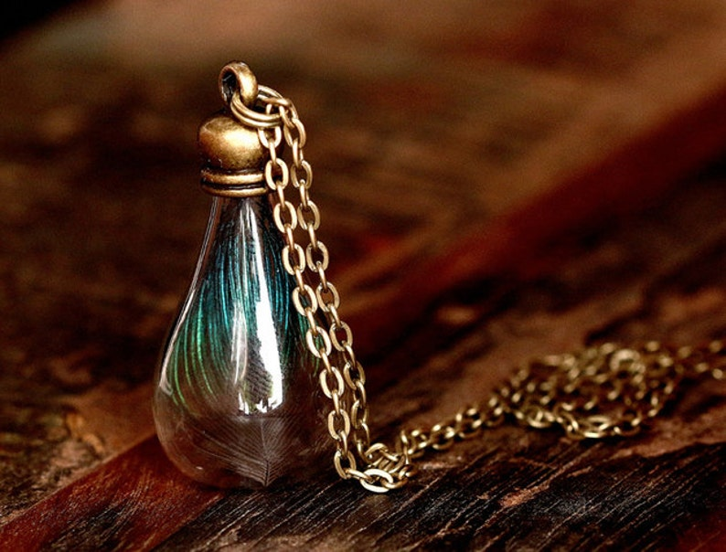 Real peacock feather in the glass vase  bronze necklace  image 0