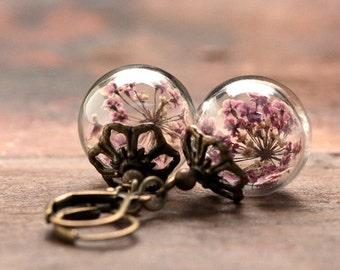 Earrings with genuine, purple dill flowers - e175