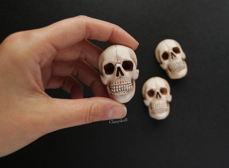 Skull magnet. Skull. Gothic magnet. Gothic. Human skull. image 0