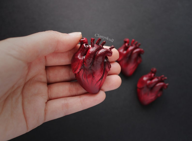 Anatomy heart brooch. Human heart brooch. Anatomy heart. Human image 0