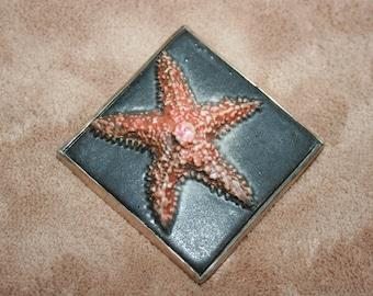Stelle marine aqua piastrella etsy
