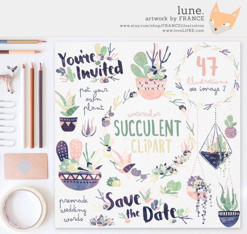 3 FOR 2. Succulent Clipart: Navy  Peach. Watercolor Clipart. image 0