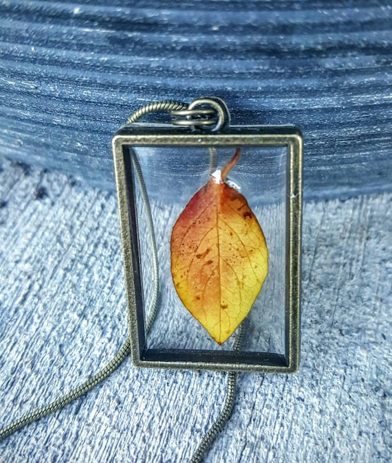 Genuine Colorado Fall Leaf in Framed Resin Necklace