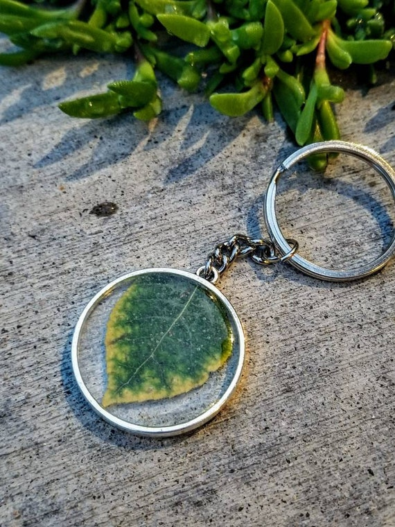 Genuine Colorado Aspen in Framed Resin Keychain