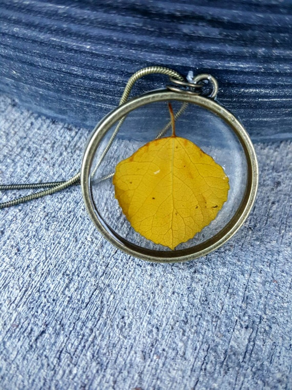 Genuine Colorado Aspen in Framed Resin Necklace