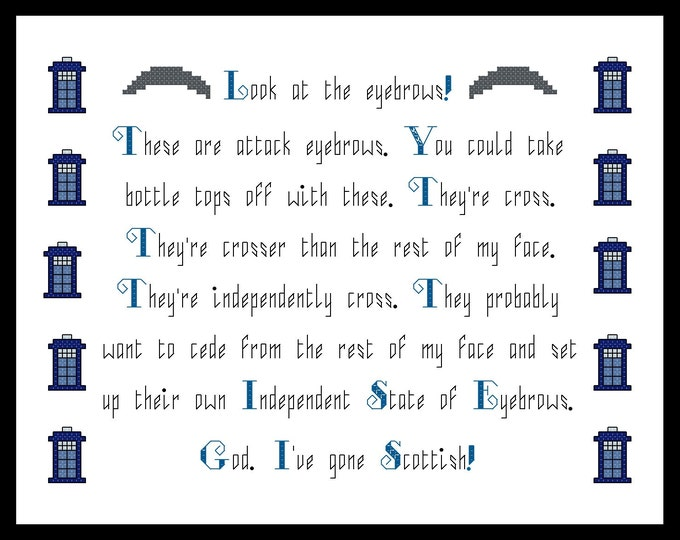 Doctor Who inspired Peter Capaldi Scottish Eyebrows Quote Cross Stitch - PDF Pattern
