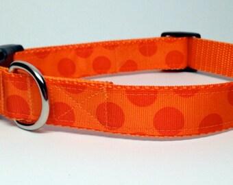 Blaze Orange with Orange Polka Dot Dog Collar Adjustable Quick Release medium, large, extra large  1 inch