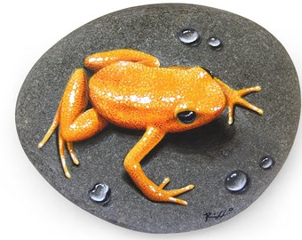 Unique Hand Painted Golden Frog Resting On A Rock | Small Trompe l'Oeil | Frog Art | Painted Stones by Roberto Rizzo
