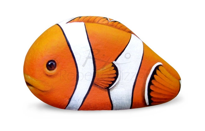 An Rare Shaped Stone Transformed in a Clownfish! Rock Painting Art by  Roberto Rizzo