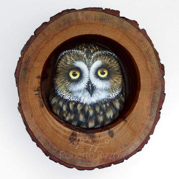 Short-Eared Owl Nest | Unique 3-D Art by Roberto Rizzo