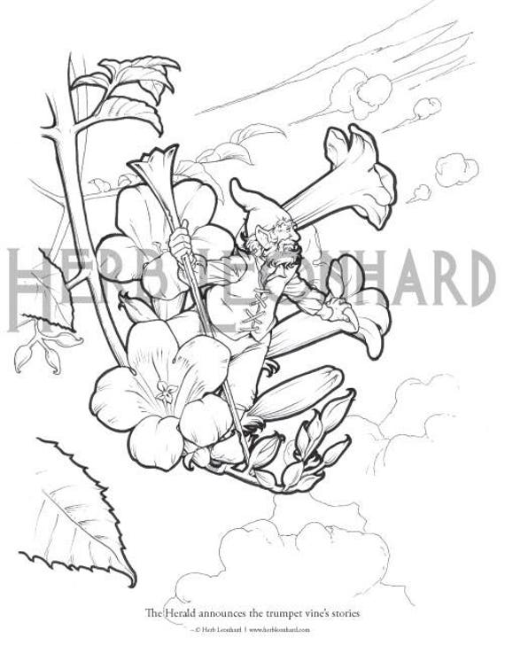 Herb Leonhard Adult Coloring Page Fairy Garden Coloring Book Page Digital Coloring Page Instant Pdf Download Printable Coloring