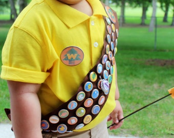 Wilderness Explorer Badges and Sash