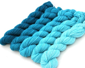 Dyed to Order - Simulation - GRADIENT KIT, contains Five Hand Dyed Mini Skeins - Your Choice of Base