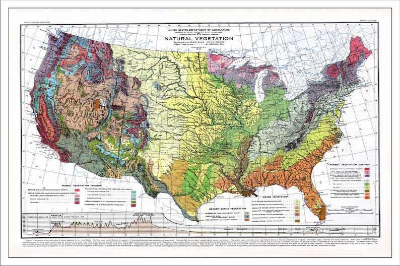 Usa Map Map Of The Usa World Map America Map Topo Map Etsy