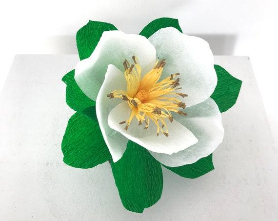 Crepe Paper Cherokee Rose
