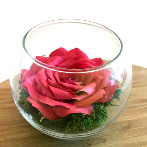 Paper Rose Terrarium - Many color choices