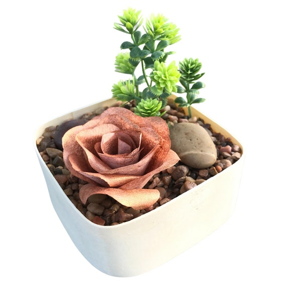Indoor garden - Tabletop garden - Desktop rock garden