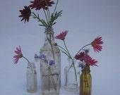 five antique salvaged bottles