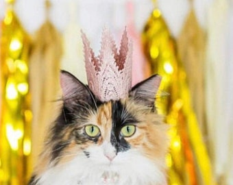 Pink Crown for Cats Dogs or Pets -  Pet Crown - Mini Aspen Lace - Smash Cake - Photography Prop
