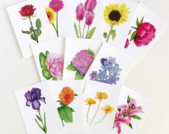 Set Of 12 Postcards | Funny Floral Postcard Set | Flower Postcard Set | Art | Botanical Prints | Funny Postcards | Funny Gift | Flower Art