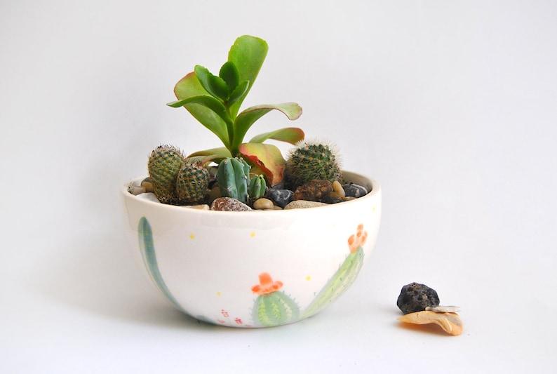 Ceramic Planter with Cactus Decoration. Perfect for Terrarium image 0
