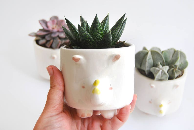 Cute Chubby Ceramic Rhino Planter Flowerpot Ceramic Pot image 0