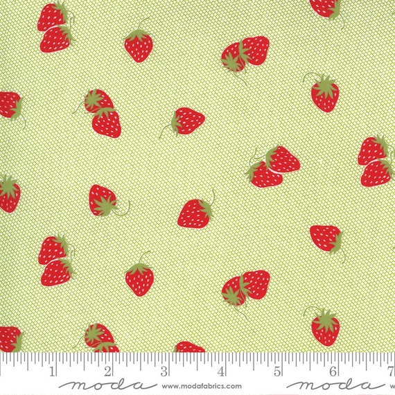 Sunday Stroll -- Strawberries in Green (5223 19) by Bonnie and Camille for Moda -- Fat Quarter