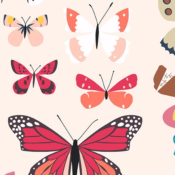 Andover Natural History by Lizzy House- Butterfly Box in Bright