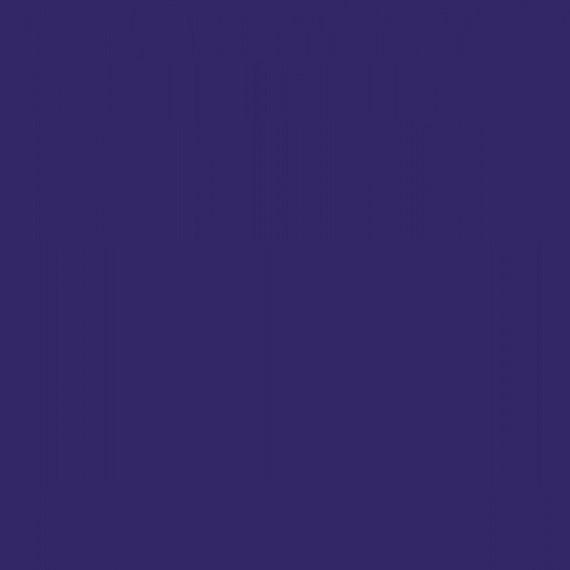 Free Spirit  Tula PInk Designer Essentials Solids in Diva - Half Metre Cut