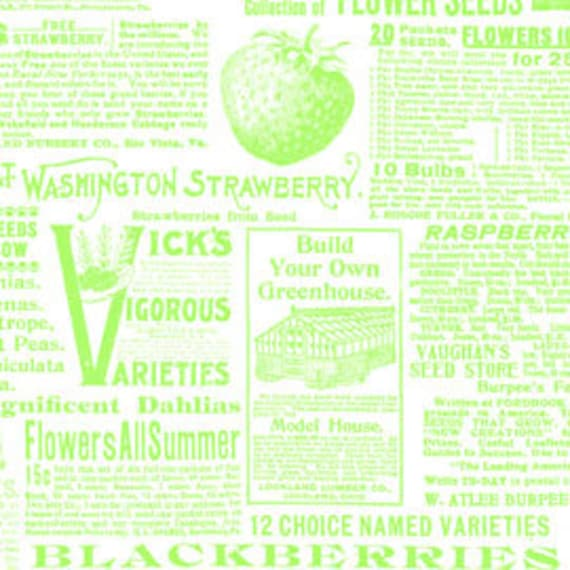 Lakehouse Favorites Seed Catalogue in Lime