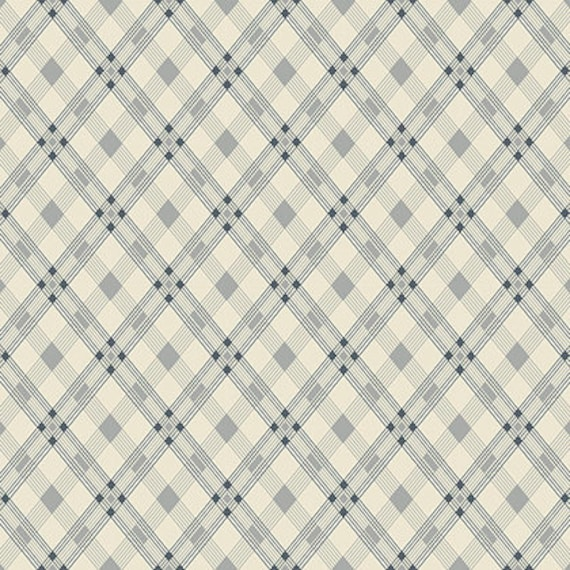 Washington Depot by Denyse Schmidt for Free Spirit Fabrics - Open Plaid in Linoleum