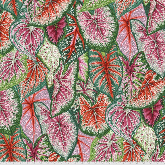 Kaffe Fassett Collective August 2021 -- Fat Quarter of Philip Jacobs Caladiums in Bright