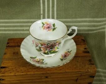 Vintage Gorgeous Royal Albert Cup & Saucer 'Summertime Series'