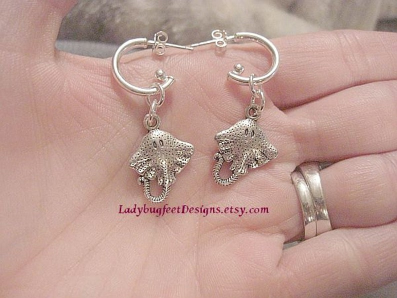 MANTA RaY  STERLING SILVER Earrings Silver Plated Sting Ray image 0