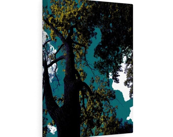 WKiD Canvas Print   Trees