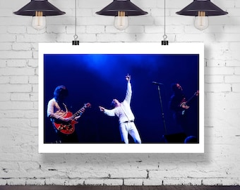 Photograph - Cage the Elephant  - Matthew Shultz -  Fine Art Photography Print Wall Art Home Decor