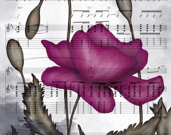 DIGITAL DOWNLOAD - digital painting of poppy flower over sheet music -magenta, black, white, olive, gray  - high resolution jpg 8x10 16x20