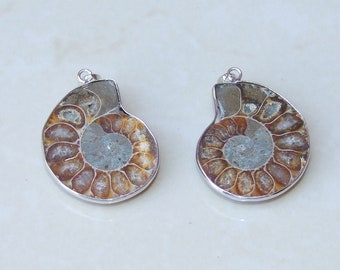 Ammonite pendant etsy matching pair ammonite pendant fossil pendant nautilus shell pendant with silver plated brass bezel and bail 29mm x 35mm 915 aloadofball Images
