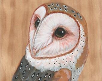 Barn Owl on Wood ~ Original Painting by kat mcd