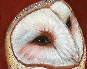 Mini Barn Owl on Masonite ~ Original Acrylic Painting by kat mcd