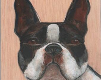 Boston Terrier on Wood ~ Original Painting by kat mcd